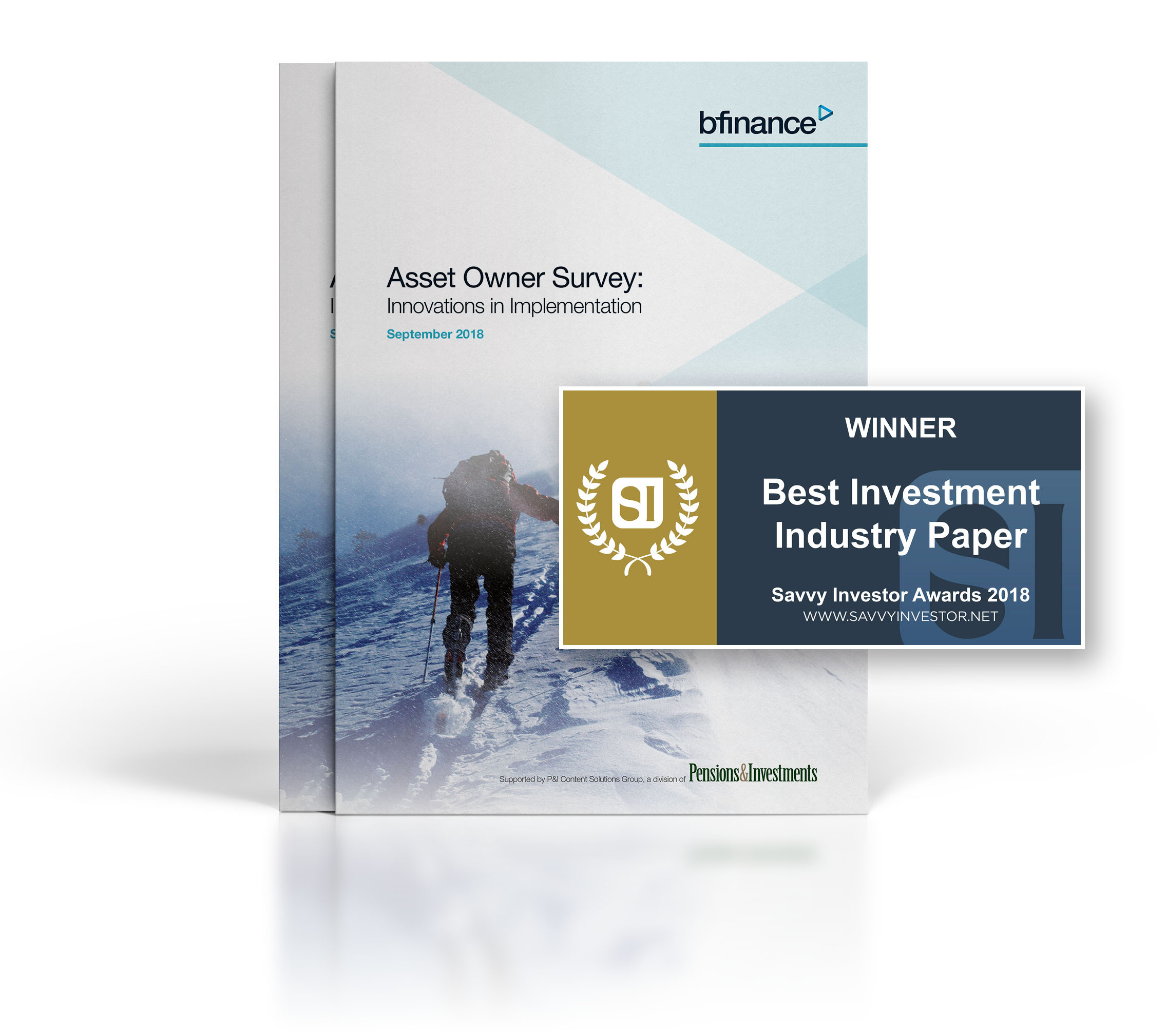 bfinance Asset Owner Report 2018